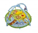 Winnie The Pooh Magic Playgym